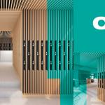 Cibdol Va Deschide Primul Magazin În Amsterdam